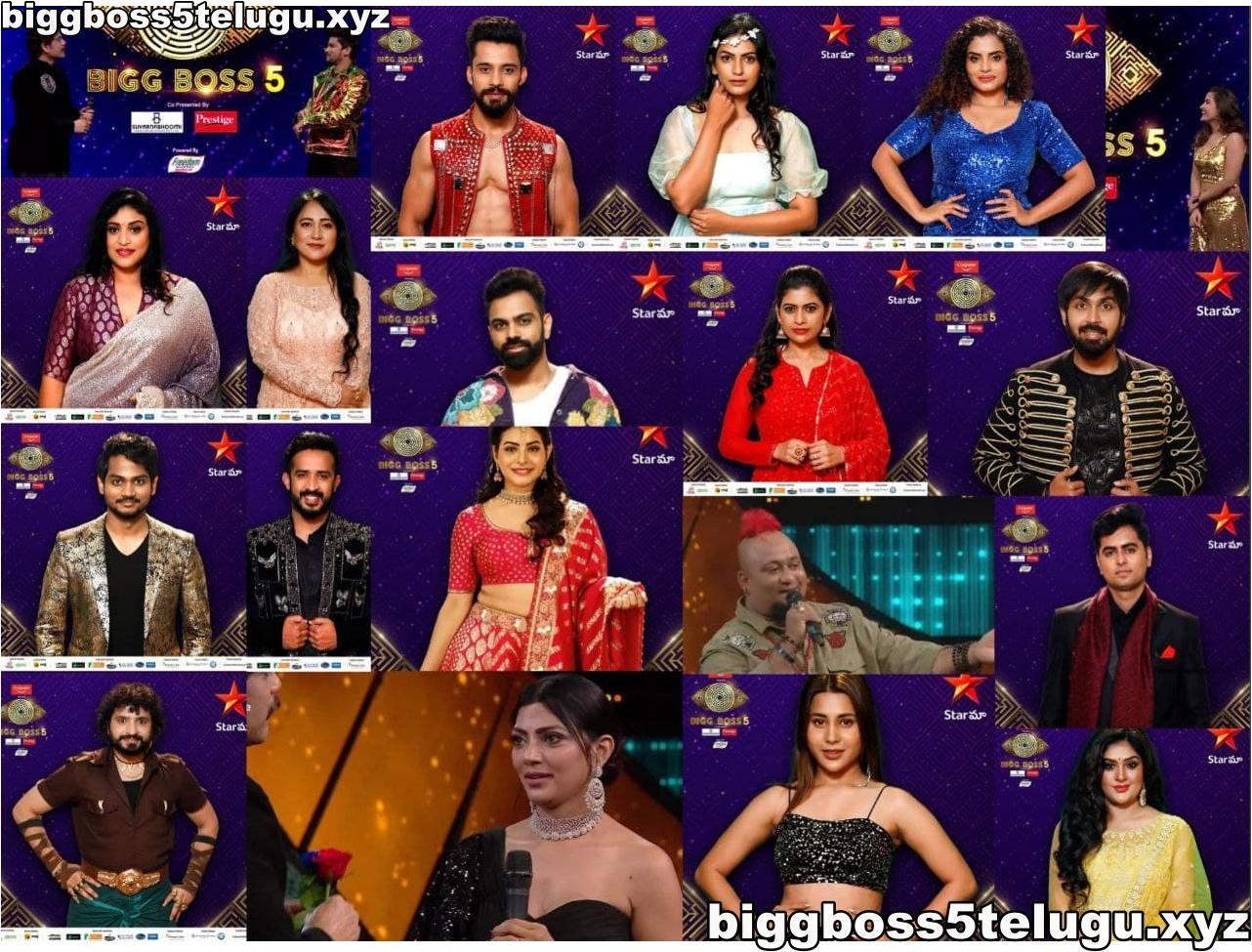 Bigg boss 5 telugu 19 contestants